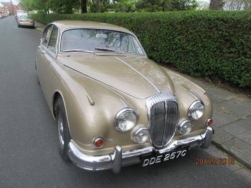for sale 1965 daimler v8 2 5 litre verifiable 56 346 miles from new classic cars hq. Black Bedroom Furniture Sets. Home Design Ideas