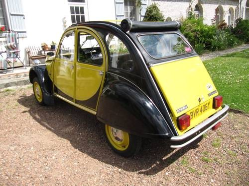 2cv charleston yellow