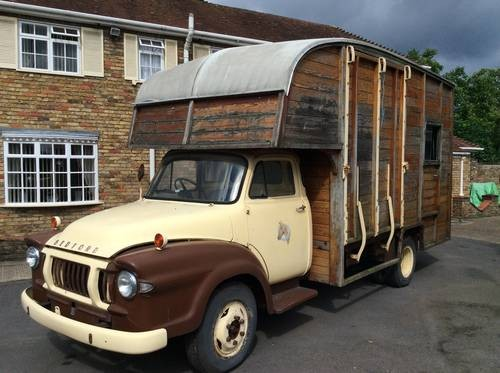 For Sale  Bedford j type horse box barn find 1963  Classic