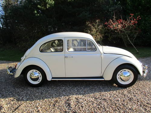 for sale volkswagen beetle 1961 small back window beetle classic cars hq. Black Bedroom Furniture Sets. Home Design Ideas